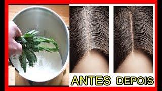 Você tem cabelo branco? Aqui esta a solução para voltar a cor natural!