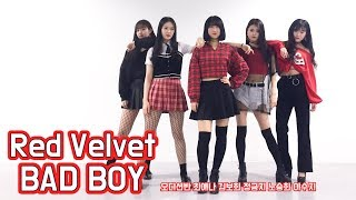 Red Velvet(레드벨벳)_ Bad Boy 5인 안무(Dance Cover)