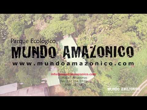 Mundo Amazónico