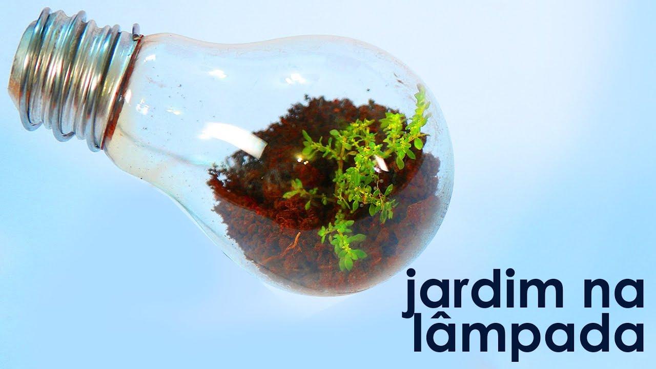 Jardim na lâmpada (como fazer um terrário em uma lâmpada