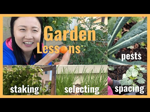 5 Gardening mistakes and lessons (San Diego, CA)