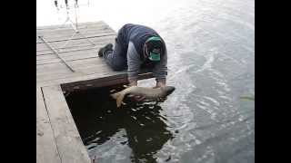 Рыбалка на 3-х карасях