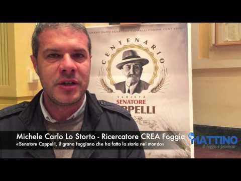 Michele Carlo Lo Storto Senatore Cappelli