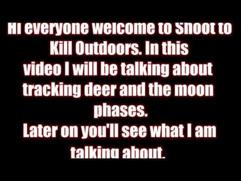 STKO Tracking Deer And The Moon Phases