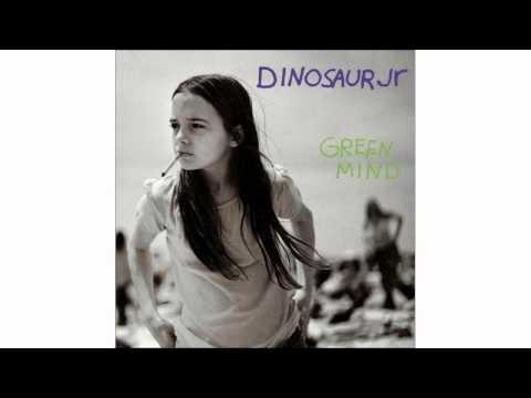Dinosaur Jr. - Turnip Farm