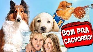 8 Cachorros MAIS LEGAIS do CINEMA! 🐶 ♥
