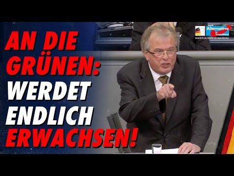 An die Grünen: Werdet endlich erwachsen! - Udo Hemmelgarn - AfD-Fraktion im Bundestag