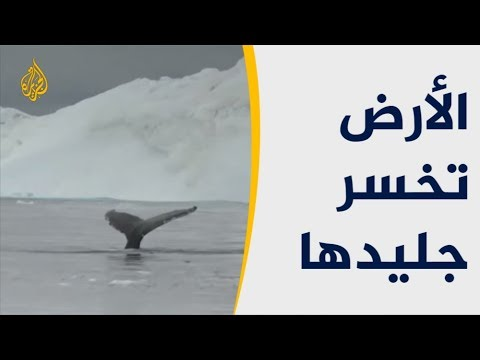 دراسة: الأرض تخسر سنويا 369 مليار طن من الجليد  - نشر قبل 2 ساعة