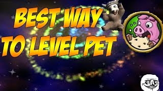Wizard101 - How to level up pet fast {UNLIMITED ENERGY METHOD]