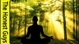 Guided Mindfulness Meditation: In a Windy Forest (Without Music) (Sleep-Friendly Fade)
