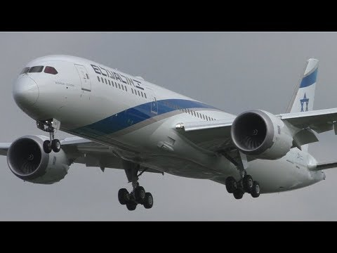 Autumn Morning Plane Spotting at London Heathrow Airport | 15th October 2017