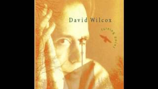 Watch David Wilcox Turning Point video