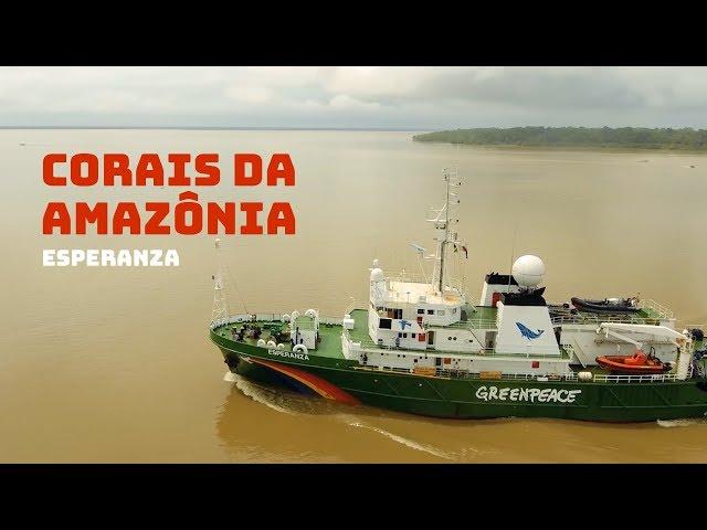 Corais da Amazônia: Esperanza