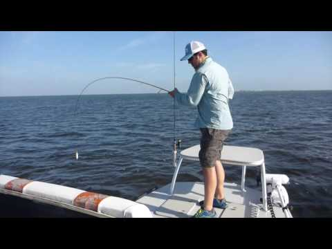 Baffin Bay Fishing Piggies On A Popping Texas Redfish And Trout