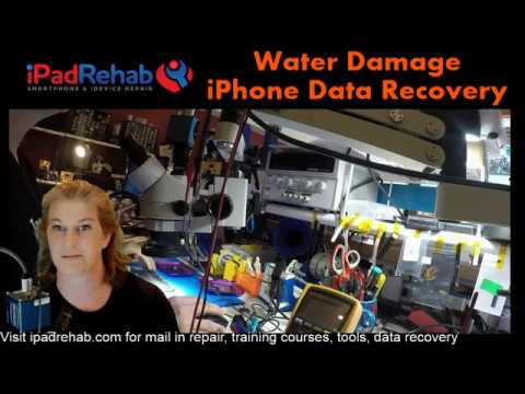 Daily dose of real time Water Damaged iPhone Data Recovery  YouTube