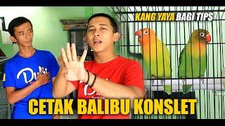 Download lagu Kang YAYA Bagi TIPS Cetak BALIBU KONSLET