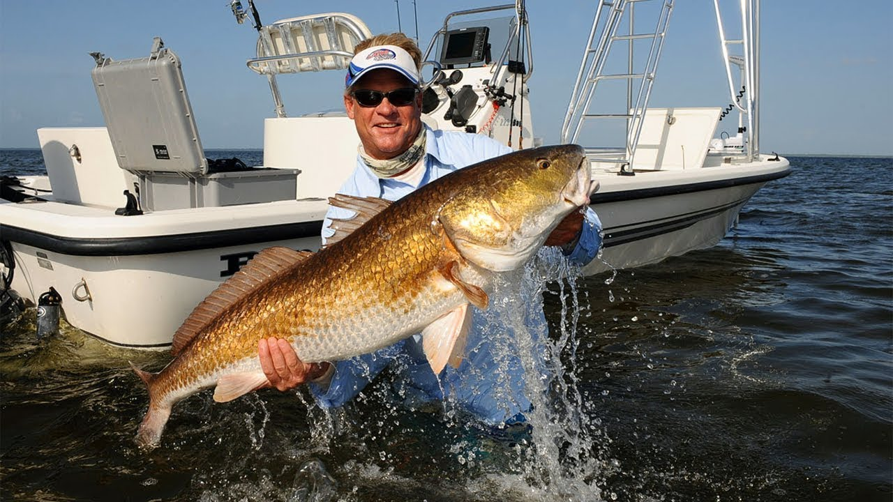 Bull red fishing with popping corks on the neuse river for Neuse river fishing