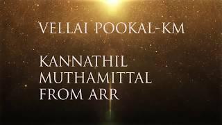 A R Rahman - Vellai Pookal(lyrics)-HD AUDIO