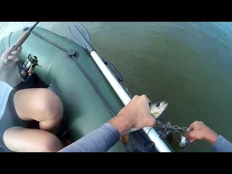 Как нельзя сажать рыбу на кукан