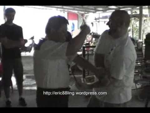 Feeding Crane - Sifu Liu Chang I