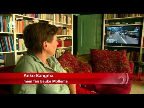 De mem fan Bauke Mollema