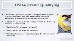 What are the USDA Loan Credit Qualifications and Requirements?