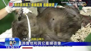 20160224中天新聞 猩媽患妊娠毒血症 婦產科剖腹引產