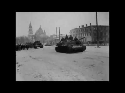 Освобождение Житомира 1943