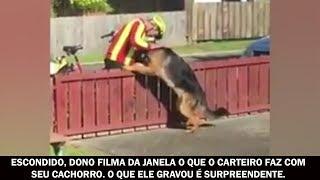 Escondido, dono filma da janela o que o carteiro faz com seu cachorro. O que ele gravou é