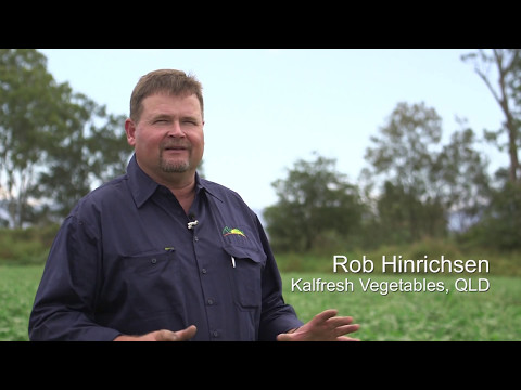 Compost use in vegetable production: A grower's perspective
