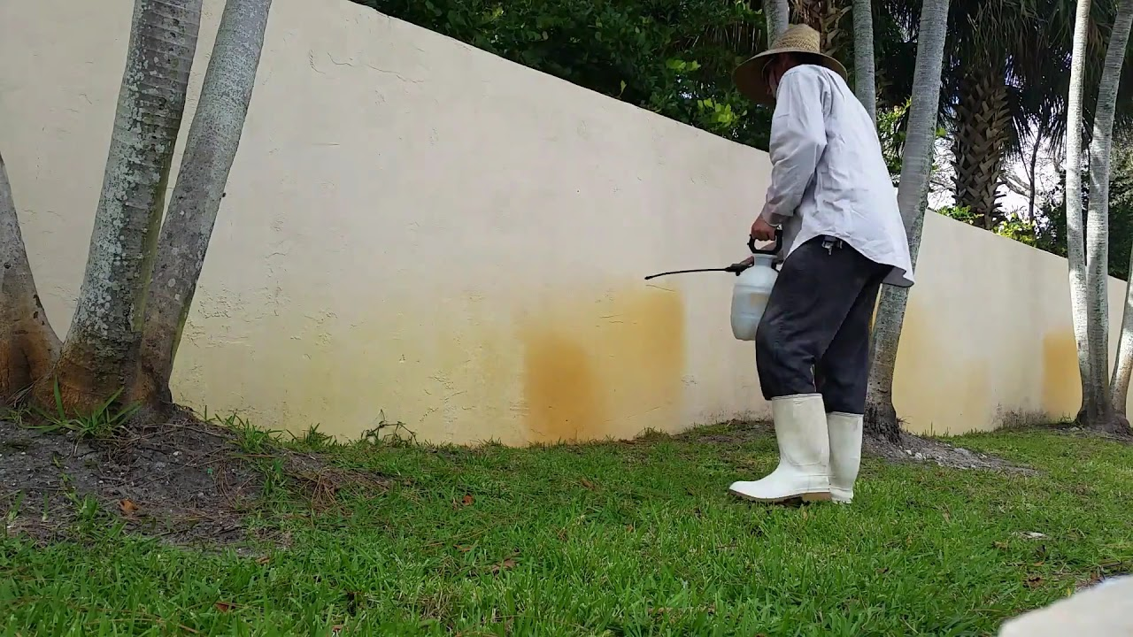Removing well water stains from walls with a pump sprayer - YouTube