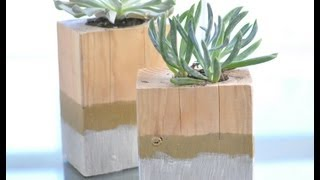 How To Make A Dip Dyed Wooden Succulent Garden From The Design Confidential