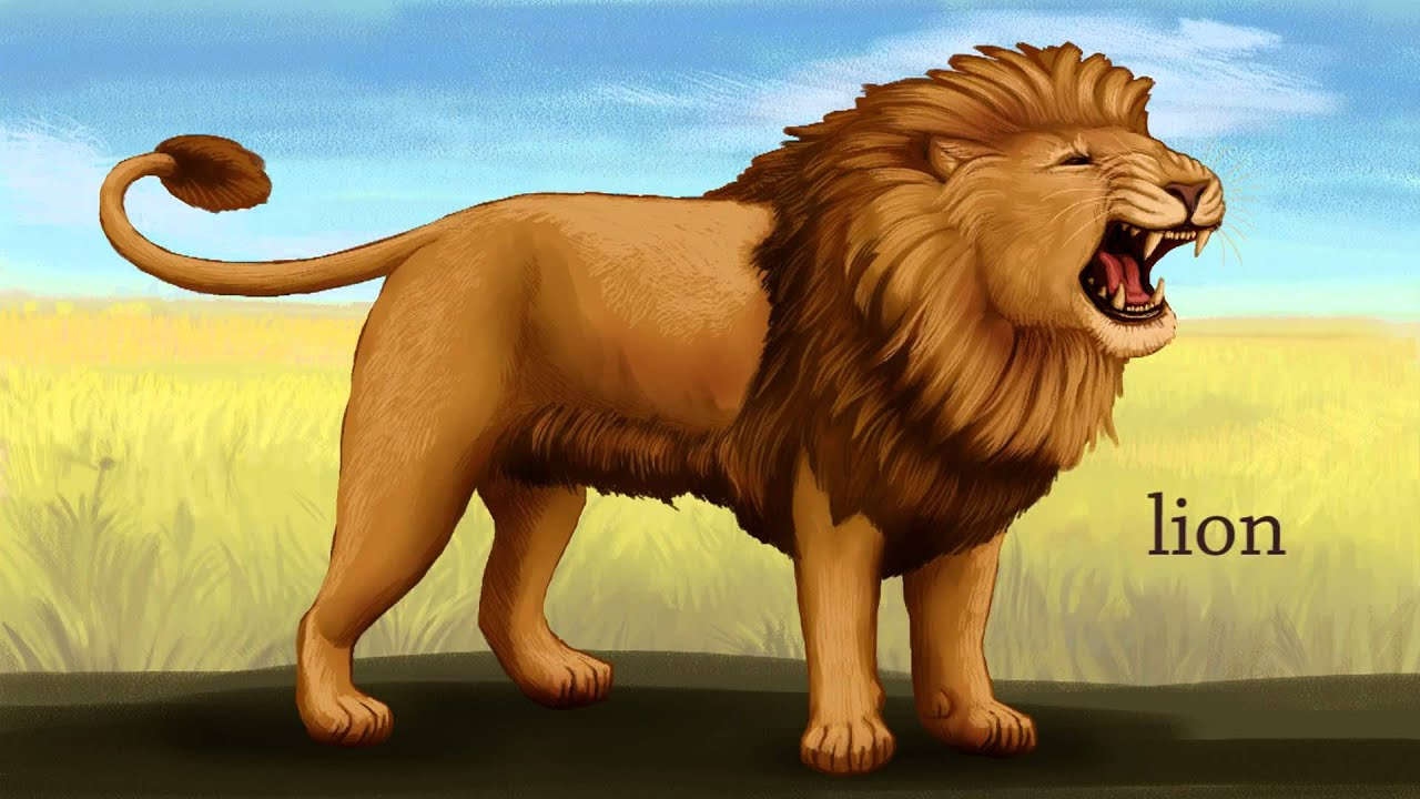 Zoo Stories: Safari Animals (for preschool and ...
