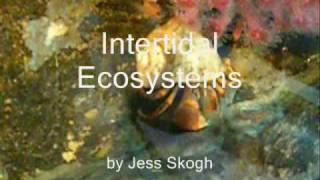 Intertidal Biome AP Biology Project
