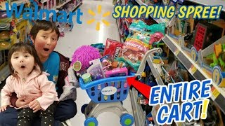 *WALMART SHOPPING SPREE* WE LET ARI FILL HER ENTIRE SHOPPING CART! BUYS TOYS, CLOTHES & CANDY!!