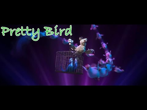 Rio - Pretty Bird