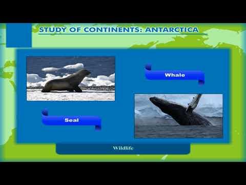 Study of Continents: Antarctica class-7
