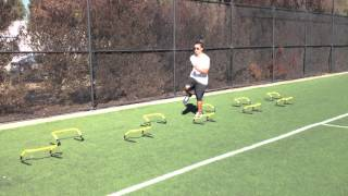 Hurdle Drills: Icky Shuffles | Sweat City Athletic Performance Training