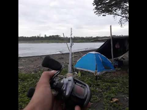 Pesca en Matina y Parismina 🎣