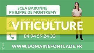 Viticulture,Vins de France,Terroir - SCEA BARONNE PHILIPPE DE MONTREMY