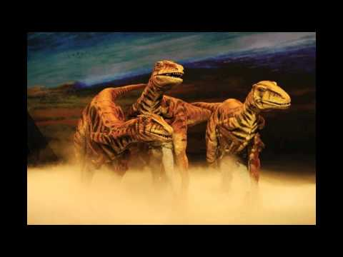 My Raptors tribute