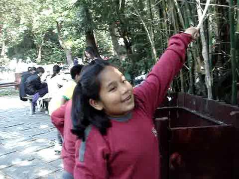 li sing tai hang school picnic 025