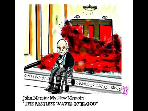 John McCain.  Memoir.  Restless Wave.  Political Cartoon.