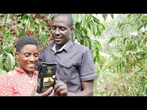 GEPA-Kaffeepartner ACPCU in Uganda