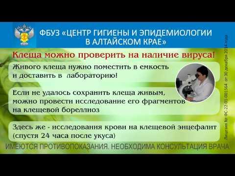 Центр гигиены и эпидемиологии Красноармейска