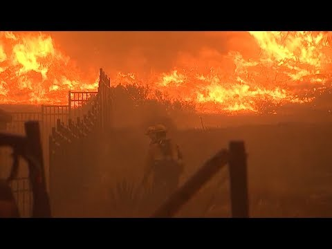 Climate Scientist Who Fled CA Wildfire: We're Going to Keep Paying Price If We Ignore Climate Change