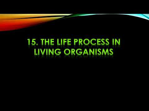 Life process of living organisms 9th science.