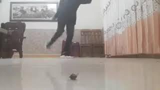 Shuffle Dance | Cutting Shapes | How to feel nhạc - Vĩ Oggy