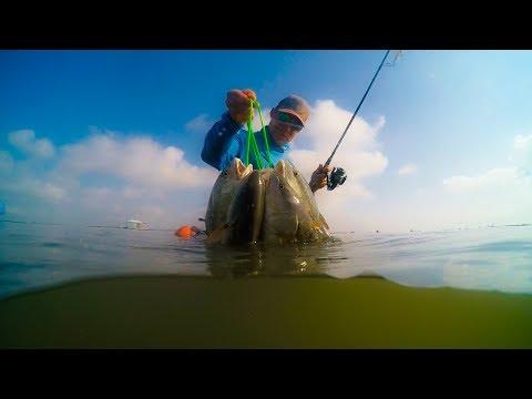 Topwater Redfish Wade Fishing The Laguna Madre!