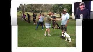 Rainy Day Dog Training In Orange County- Falco K9 Academy